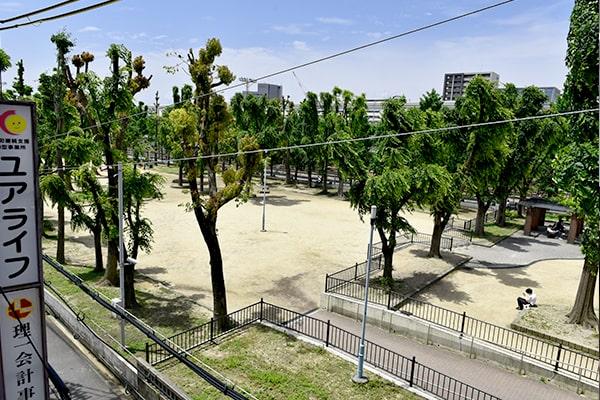 緑豊かな公園前